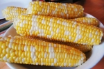bi-color-corn